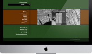 Todd Skenderian Architect Website